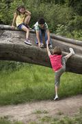 Friends Climbing On Fallen Tree - stock photo
