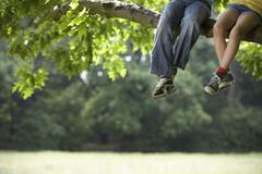 Friends Relaxing On Tree Branch - stock photo