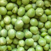 Stock Photo of green peas