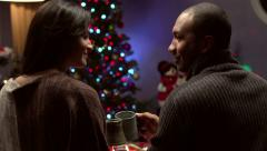 Couple making a Christmas toast - Slow Motion Stock Footage