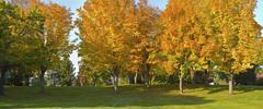 Public park panorama gresham oregon. Stock Photos