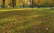 Stock Photo of public park panorama gresham oregon.
