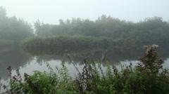 Fog on lake (2).mp4 Stock Footage