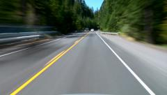 Stock Video Footage of Driving Evergreen Forest