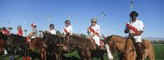 Polo Players And Umpire On Horses Stock Photos