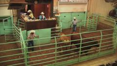 Cattle auction in progress 1 Stock Footage