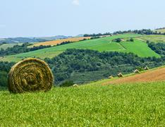 country landscape in tarn (france) - stock photo