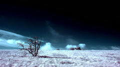 InfraRed landscape: Movement of the clouds on the mountain (TimeLapse) FULL HD Stock Footage