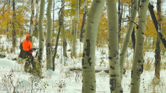 Elk Hunter Stock Footage