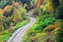 Railway tracks in forest curving left. - stock photo