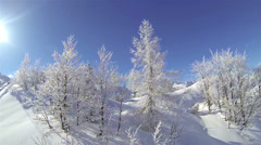 Snowy European Alps - stock footage