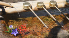 Stone sink for washing hand in a Japanese temple Stock Footage
