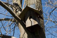 Wooden bird house on tree Stock Photos