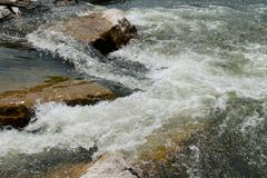 Rapids and rocks in river - stock photo