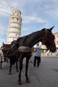 Carrying the leaning tower of Pisa on a barouche. - stock photo