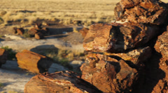 Petrified Wood Pan Right Stock Footage