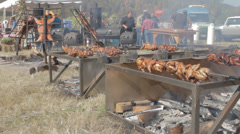 Country Barbecue pit w wood fire, chicken, pig Stock Footage