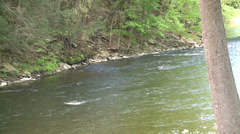 Rapidly moving stream (3 of 5) Stock Footage