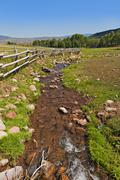 A tranquil  green country scene with a small running stream Stock Photos