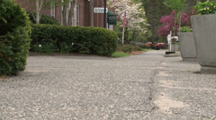 Views from sidewalk at ground-level (1 of 4) Stock Footage