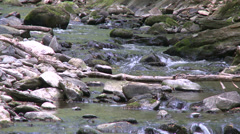 Rock-filled stream (2 of 7) Stock Footage