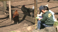 Stock Video Footage of Children taking notes and observing animals (1 of 8)