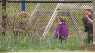 Stock Video Footage of Children on swings as seen through fencing