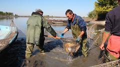 Stock Photo of Fishermen at Work