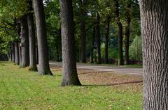 A park in Antwerp Stock Photos