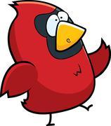 Cardinal Walking Stock Illustration