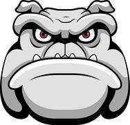 Bulldog Face Piirros