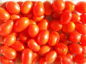 Stock Photo of cherry tomato background