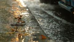 Autumn heavy rain at bus stop Stock Footage