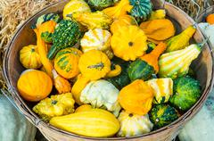basket of decorative gourds on display - stock photo