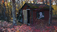 Stock Video Footage of Abandoned deteriorating house in the woods 2