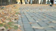 Stock Video Footage of Cobblestone alley in autumn