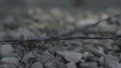 Concentration Camp - barbed wire travelling - stock footage