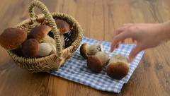 Picking up  penny bun mushrooms from a basket and putting on table Stock Footage