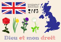 floral symbols of united kingdom of great britain and northern ireland - stock illustration