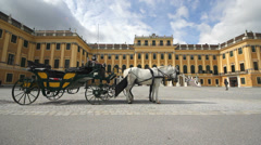 City symbol, carriage with white and black horses in front of Schonbrunn palace Stock Footage