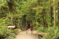 Couple hikes Olympic National Park Stock Photos