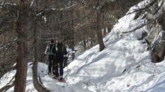 Escursionisti, tourist, ciaspole, neve, snow, parco nazionale Gran Paradis Stock Footage