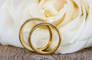 Stock Photo of golden wedding rings with white rose