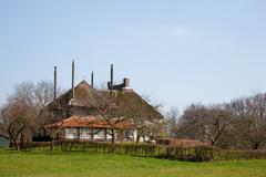 Farmhouse in dutch landscape Stock Photos