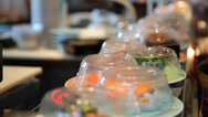Stock Video Footage of Sushi on Conveyer Belt