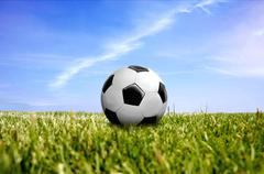 A ball on green grass Stock Photos