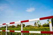 Traffic fence Stock Photos