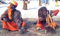 Indian hermit1 Stock Photos