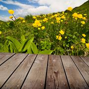 globe-flower and empty wooden deck table. ready for product montage display. - stock photo