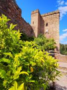 Alcazaba in malaga, spain Stock Photos